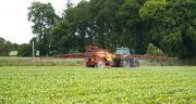 La stratégie post-levée stricte  concerne une majorité des surfaces de maïs traitées (49%). CP : DR