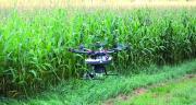 Avec une autonomie en énergie et en capsules d'environ 10 hectares, la capacité d'épandage journalière du drone est de l'ordre de 100 à 200 hectares. Photo : Biotop