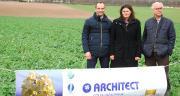De gauche à droite : François Janseune, responsable marketing opérationnel Advanta, Marina Carette, chef marché colza Advanta et Jean-Eric Dheu, directeur de recherche au sein de Limagrain Europe. © M. Lecourtier/Pixel image