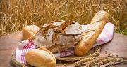 La création de valeur peut se faire via des productions de niche, l'agriculture bio, l'agriculture raisonnée, la production de semences hybride, des variétés spécifiques… © Visions-AD