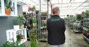 Horticash, qui expédie des plantes depuis deux sites dans l'Ouest, a capté  de nouveaux clients avec le site créé en 2011. ©M.-D. Guihard/Pixel Image
