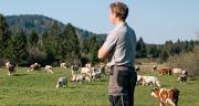 La Coopération agricole vient de rendre son rapport économique « La souveraineté alimentaire de la France : tirer les leçons de la pandémie de Covid-19 ». Photo : DR