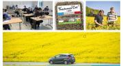 NatUp encourage et valorise les approches agroécologiques de ses adhérents. Photo : NatUp