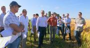 Malteurs et brasseurs en visite chez Cérévia. Photo : Dijon Céréales