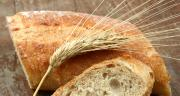 Selon l'enquête collecteurs de FranceAgriMer et Arvalis, au 20 août, 45 % des volumes collectés en blé tendre ont une force boulangère de 170-200. 24 % sont supérieurs à 200. Photo : Claude Calcagno/Adobe Stock