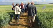 Valfrance veut maintenir les échanges, appréciés par ses sociétaires. Elle proposera donc aux agriculteurs de poser leurs questions grâce à un tchat lors du webinaire. CP : Valfrance