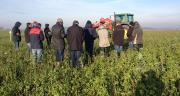 Visite d'une plateforme d'un agriculteur Dephy organisée par Négoce Nord-Est. Photo : DR