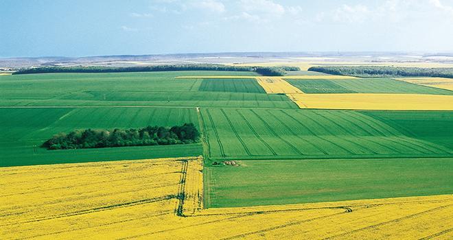 Il s'agit peut-être d'anticiper la prochaine PAC et la volonté affichée d'une plus grande souveraineté alimentaire. Photo : Pixel6TM