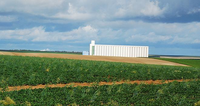 Dominique Chargé, président de La Coopération agricole (anciennement Coop de France, auteur du recours) se dit satisfait d'avoir été entendu par le Conseil d'État. Photo : Pixel6TM