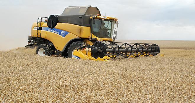 La récolte de céréales a été meilleure que prévue. N. Chemineau/Pixel Image