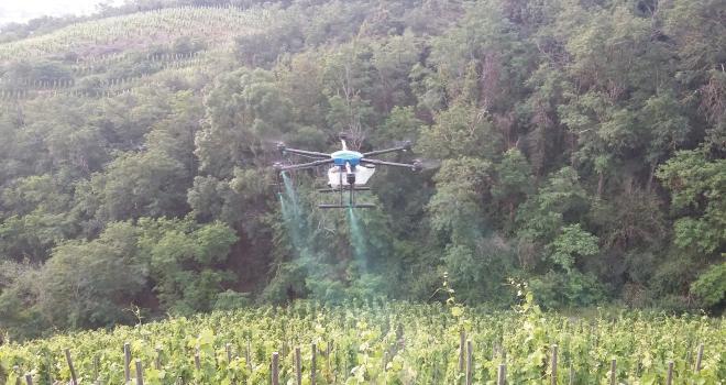 L'application de produits phytosanitaires par drone pourrait constituer une alternative  au chenillard et aux appareils de traitement à dos pour les vignobles en forte pente. CP : CA de l'Ardèche
