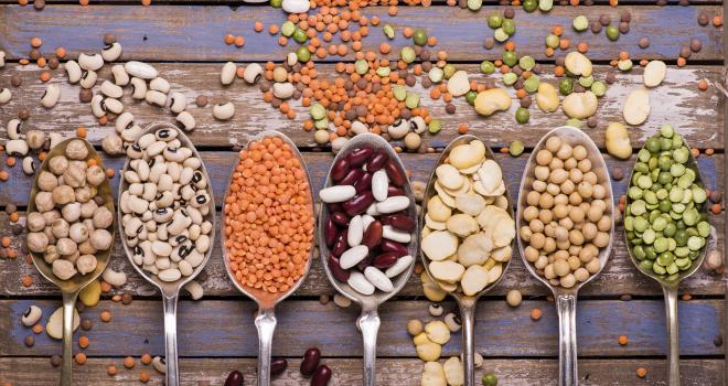 Le ministre de l'Agriculture a lancé le 1er décembre 2020 la stratégie nationale en faveur du développement des protéines végétales. CP : luigi giordano/Adobe Stock