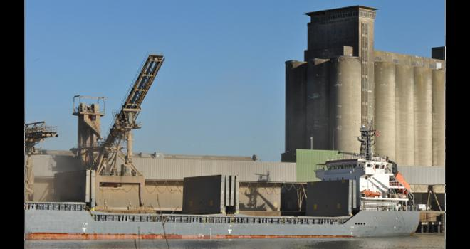 Pour le Gouvernement, l'enjeu est de permettre au secteur du grain de préserver son fonctionnement à un niveau proche de la normale. CP : MeussieuxGilles/Adobe Stock