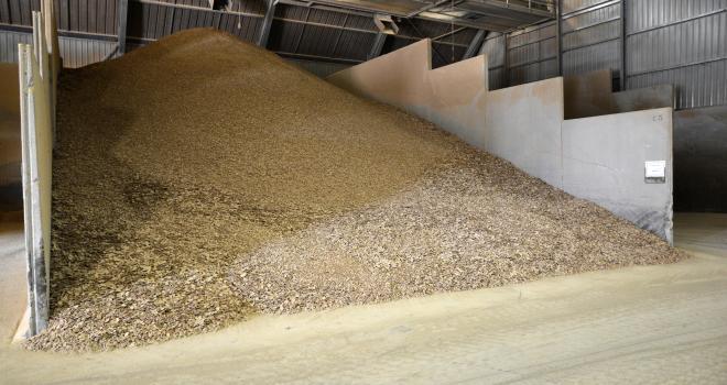 LCA nutrition animale travaille à la construction d'un modèle économique valorisant la décarbonation de l'alimentation animale. CP : Happyculteur/Adobe Stock