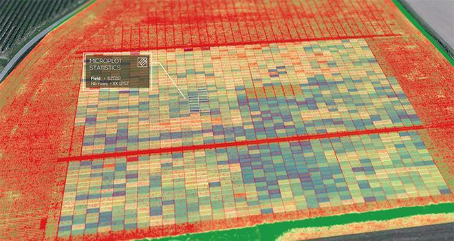 Phenome Networks et Delair s'associent pour proposer aux semenciers et aux laboratoires de sélection variétale une offre de gestion et d'exploitation des données de recherche agronomiques. Photo : Delair