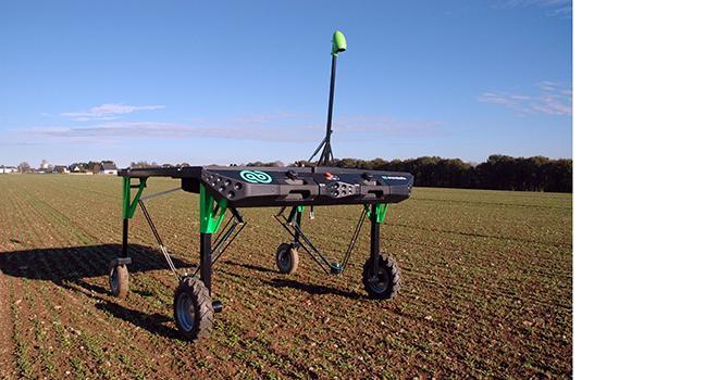 Triskalia a signé un partenariat et a investi 100 000 € aux côtés de la start-up Ecorobotix pour développer un robot de désherbage capable de travailler dans un champ d'épinards ou de haricots. ©D. Bodiou/Pixel image
