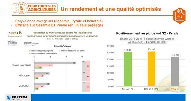 Selon Guillaume Quinot, responsable technique maïs chez Corteva Agriscience, le rendement gagné est de huit quintaux par hectare en maïs grain avec Mezalid™. CP : DR