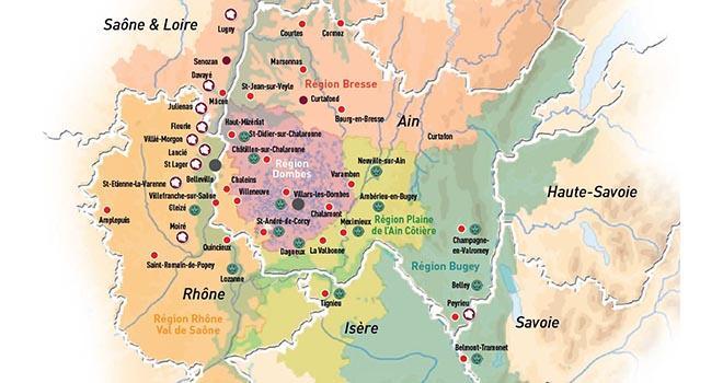 Terre d'Alliances compte 24 site d'appro-collecte, 8 dépôts Ecovigne, 15 magasins grand public. © Terre d'Alliances