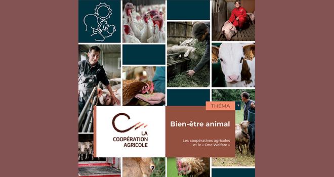 Le Théma, dont l'ensemble de la rédaction a été guidé par le concept de  « One Wel-fare » rassemble au total 18 pratiques mises en œuvre par les coopératives agricoles en matière de bien-être animal. Photo : DR