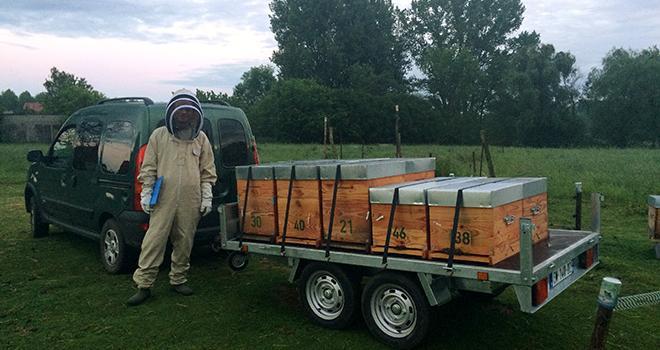 Cette transhumance a été organisée par Coop de France Déshydratation répondant à l'appel au secours de l'Association des apiculteurs professionnels en pays du Nord-Picardie. Photo : DR