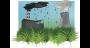 Les entreprises fortement émettrices de GES (gaz à effet de serre) achètent des quotas d'émission à des entreprises bénéficiaires d'un quota supérieur à leurs émissions, parce qu'elles auront mis en place des mesures plus sobres. © Nicolas Jardimage/adobe stock